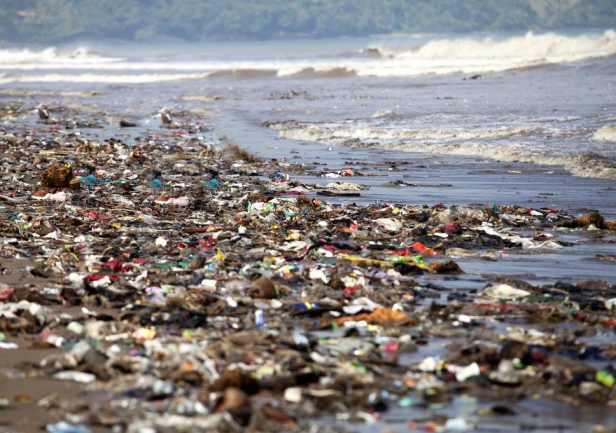 Plastic Beach - 1402 Boyan Slat Joe Rogan